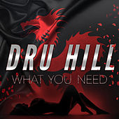 What You Need by Dru Hill