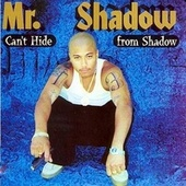 Can't Hide from Shadow von Mr. Shadow