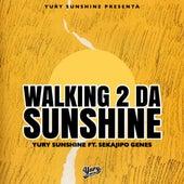 Walking 2 Da Sunshine by Yury Sunshine