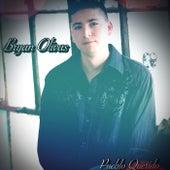 Pueblo Querido de Bryan Olivas