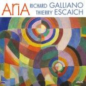 Aria von Richard Galliano