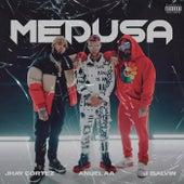 Medusa by Jhay Cortez, Anuel AA & J. Balvin