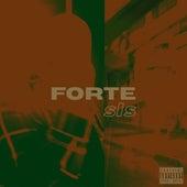 SLS von FORTE
