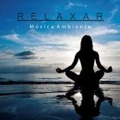 Relaxar: Música Ambiente de Meditação e Espiritualidade Musica Academia