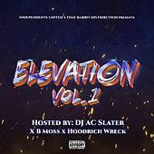 Independents United: Elevation Vol. 1 by Various Artists