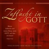 Zuflucht in Gott (Lieder zur Ehre Gottes) by Voice of Hope Chor