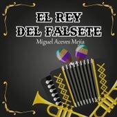 El Rey del Falsete de Miguel Aceves Mejia