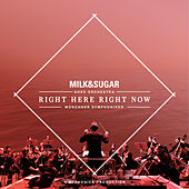 IBIZA SYMPHONICA - Right Here, Right Now by Milk & Sugar