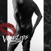 WILD LIPS by Koji Kikkawa