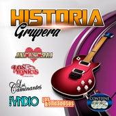 Historia Grupera de Various Artists