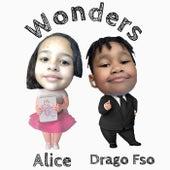 Wonders von Alice