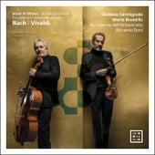 Bach & Vivaldi: Sonar in ottava. Double Concertos for Violin and Violoncello Piccolo von Mario Brunello
