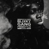 Blixky Gang Freestyle de 22Gz