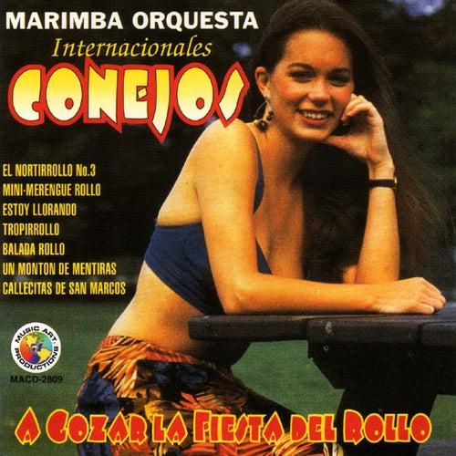 A Gozar La Fiesta Del Rollo by Marimba Orquesta Internacionales Conejos