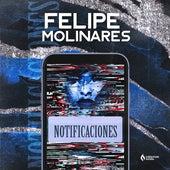 Notificaciones de Felipe Molinares