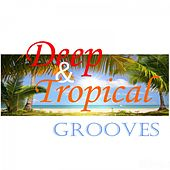 Deep & Tropical Grooves by Various Artists