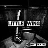 Little Wing von Tony Wayne