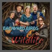 Wildlife de Backyard Birds