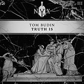 Truth Is by Tom Budin