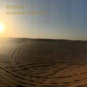 Wayfaring Stranger de Turner