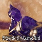 49 Sounds for a Calmed Mind von massage