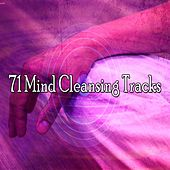 71 Mind Cleansing Tracks von Study Concentration