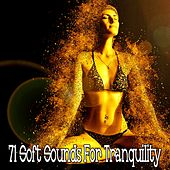 71 Soft Sounds for Tranquility by Yoga Workout Music (1)