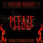 PLEAZE Take The Pain Away de Demolish Ragheem
