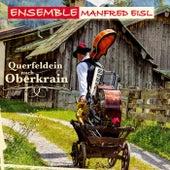 Querfeldein nach Oberkrain de Ensemble Manfred Eisl