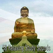 58 Relaxing Study Sounds di Yoga Tribe