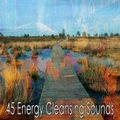 45 Energy Cleansing Sounds de Zen Music Garden