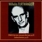 Wilhelm Furtwangler Conducts. Richard Strauss by Wilhelm Furtwängler
