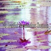 73 Restful Meditation Sounds de Zen Meditation and Natural White Noise and New Age Deep Massage