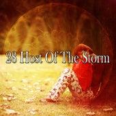 28 Host of the Storm de Thunderstorm Sleep