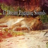 47 Dream Engaging Sounds de Dormir