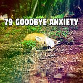 79 Goodbye Anxiety von Rockabye Lullaby