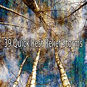39 Quick Rest Relief Storms by Rain Sounds and White Noise