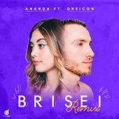 Brisei (GUDI Remix) de Ananda