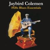 1920s Blues Essentials by Jaybird Coleman