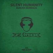 Aurora Borealis by Silent Humanity
