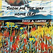 Show Me the Way Home - EP by David A. Larsen
