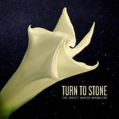 Turn to Stone (feat. Maya De Vitry) von Sweet Water Warblers