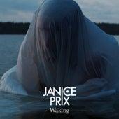 Waking (Radio Edit) by Janice Prix