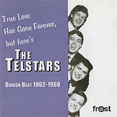 True Love Has Gone Forever, But Here's the Telstars de The Telstars