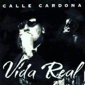 Vida Real by Calle Cardona