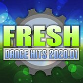Fresh Dance Hits 2020.01 de Various Artists