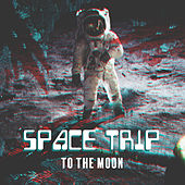 Space Trip to the Moon by Various Artists