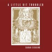 A Little Bit Troubled von Sarah Siskind