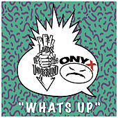 Whats Up by Lords of the Underground