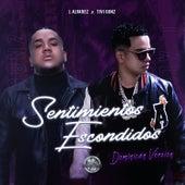 Sentimientos Escondidos Dominican Version by J. Alvarez